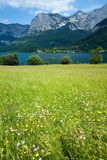 Alpine summer lake view Royalty Free Stock Photography