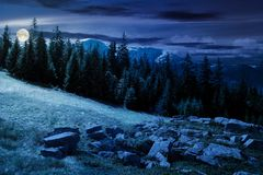 Alpine summer landscape composite at night in full moon light stock photography