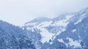 Alpine summit and snow Stock Photos