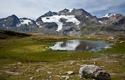 Alpine switzerland Royalty Free Stock Image