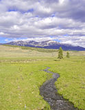 Alpine Szene mit Strom in Rocky Mountains Stockbilder