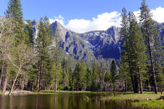Alpine Szene in Yosemite Nationalpark, Sierra Nevada Mountains, Kalifornien lizenzfreies stockbild