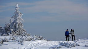 Alpine Touring Skiers Stock Images