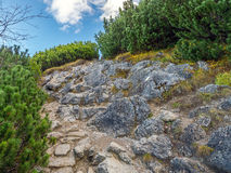 Alpine touristic trail in High Tatra Stock Images