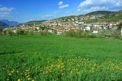 Alpine town and meadow Stock Photography