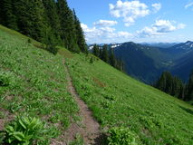 Alpine trail Royalty Free Stock Images