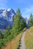 Alpine trail in Ferret Valley Royalty Free Stock Images