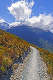 Alpine Trail into the Highlands Royalty Free Stock Photos