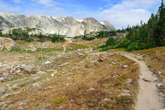 Alpine trail in Medicine Bow Mountains of Wyoming. In summer stock photos