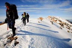 Alpine trekkers Lizenzfreies Stockfoto