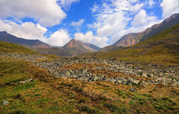 Alpine tundra Stock Photos