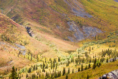 Alpine tundra habitat in high mountain valley Stock Photo