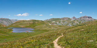 Alpine Tundra in the Rocky Mountains Stock Image