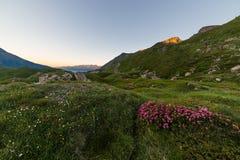 Alpine twilight Stock Photography