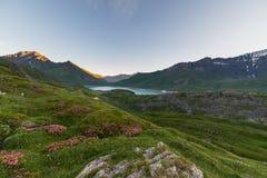 Alpine twilight Stock Image