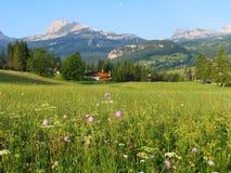 Alpine valley Royalty Free Stock Photos