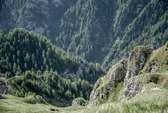 Alpine valley filled with green vegetation. Among giant rocks in Bucegi Mountains, Romania, Europe Stock Photos