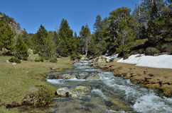 Alpine valley with a glacial torrent Stock Photo
