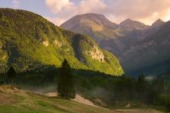 Alpine valley in the morning mist,above Lake Bohinj. Slovenia Royalty Free Stock Photos