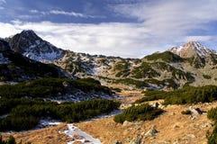 Alpine vegetation. Alpine view on autumn on Retezat National Park Royalty Free Stock Image