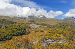 Alpine Vegetation below cloud shrouded peaks Stock Image