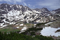 Alpine view. Vegetation, snow, lake and peaks on alpine area Royalty Free Stock Photography