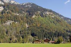 Alpine view Royalty Free Stock Photo