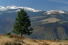 Alpine view. From Tulisa Mountain to Retezat Mountain Royalty Free Stock Photo