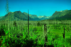 Alpine views. Views in alpine regions of the mountains stock images