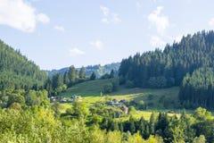 Alpine village near the forest. Alpine village near the spruce forest in Ukrainian Carpathian Mountains royalty free stock photos