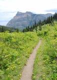 Alpine wandernde Spur Lizenzfreies Stockfoto