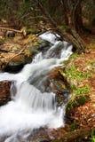 alpine waterfall Royalty Free Stock Photos