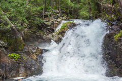 Alpine waterfall in mountain forest Royalty Free Stock Images