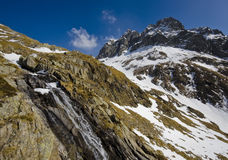 Mountain stream in Alps Stock Images