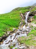 Alpine waterfall Royalty Free Stock Image