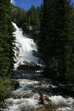 Alpine Waterfall. A rushing waterfall hidden behind the pines in the Tetons Stock Photos