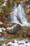 Alpine waterfall in winter Royalty Free Stock Photos
