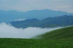 Alpine Weide der Stolz des Morgens Lizenzfreie Stockfotos