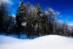 Alpine winter scenery - freezing Stock Image