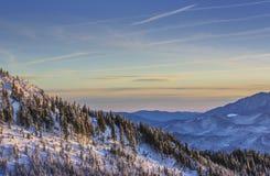 Sunrise winter scenery in Postavaru mountain, Romania royalty free stock photos