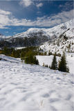 Alpine Winterschneeszene Lizenzfreies Stockbild