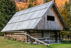 Alpine wooden barn in the forest. Royalty Free Stock Images