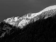 Alpineglow di primo mattino (bianco e nero) Fotografia Stock Libera da Diritti