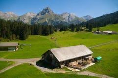 Alpiner Bauernhof Stockbilder