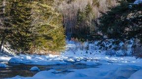 Alpiner Fluss Lizenzfreie Stockbilder