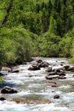 Alpiner Fluss in Nationalpark Ordesa in Aragonien, Spanien Lizenzfreie Stockbilder