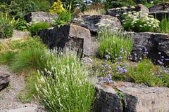 Alpiner Garten Stockbild