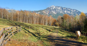 Alpiner Herbstgebirgslandwirtschaftliche Landschaft Lizenzfreie Stockbilder
