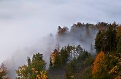 Alpiner Wald des Herbstes im Nebel Stockfoto