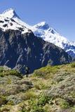 Alpiner Wanderer Lizenzfreie Stockbilder